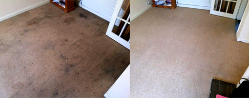 carpet cleaners Droitwich